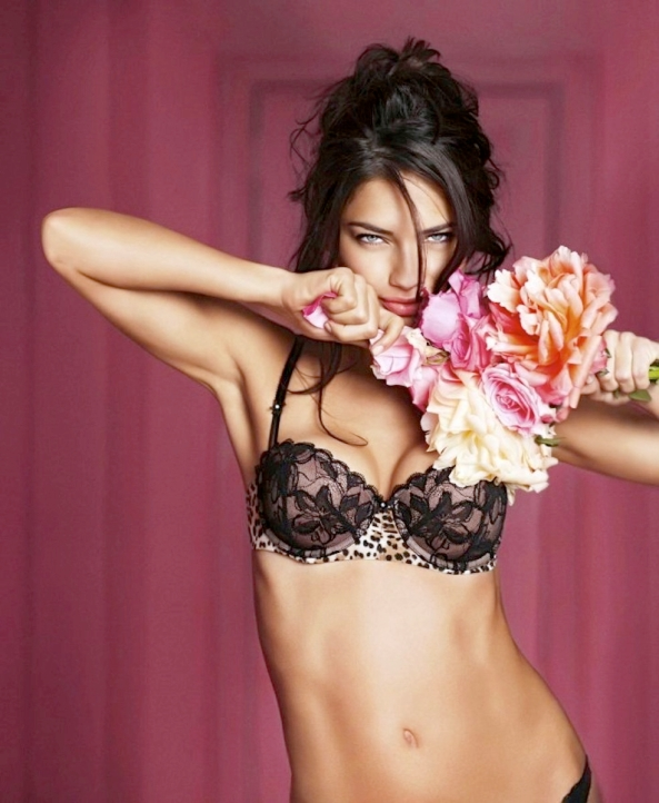 valentines-day-lingerie-20