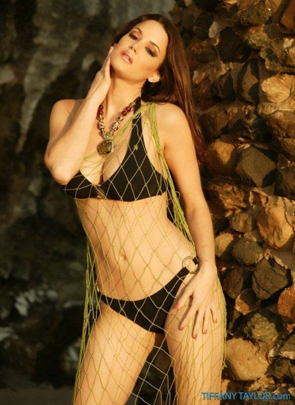 Tiffany Taylor+