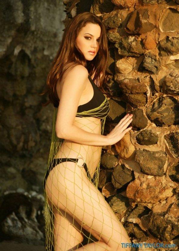 Tiffany Taylor+1
