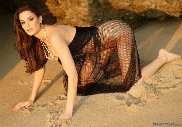 Tiffany Taylor+25