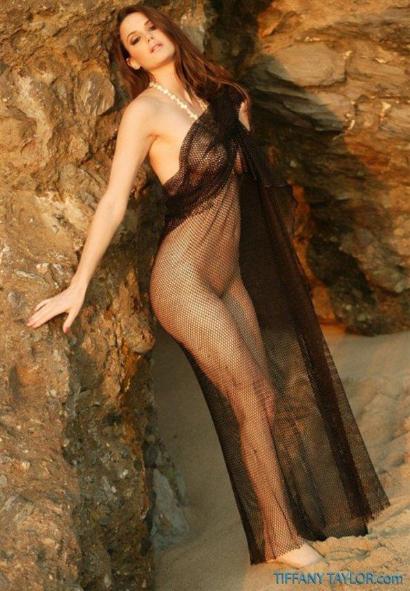 Tiffany Taylor+34