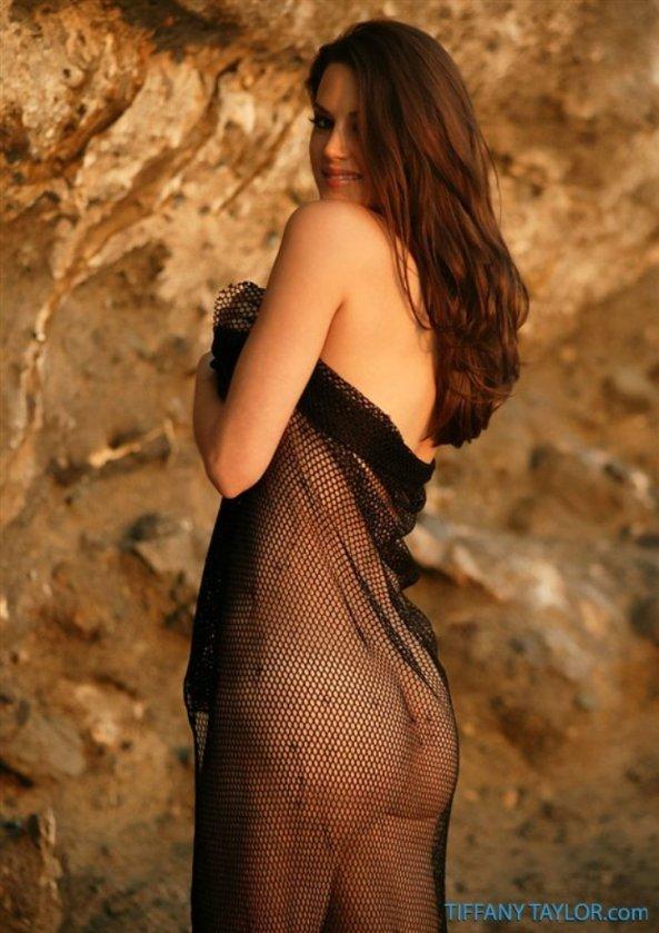 Tiffany Taylor+37